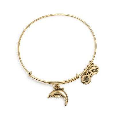 Alex and Ani jewelry - Null